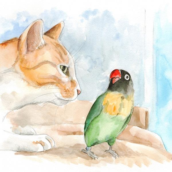 ilustraciones personalizadas retratos de mascotas