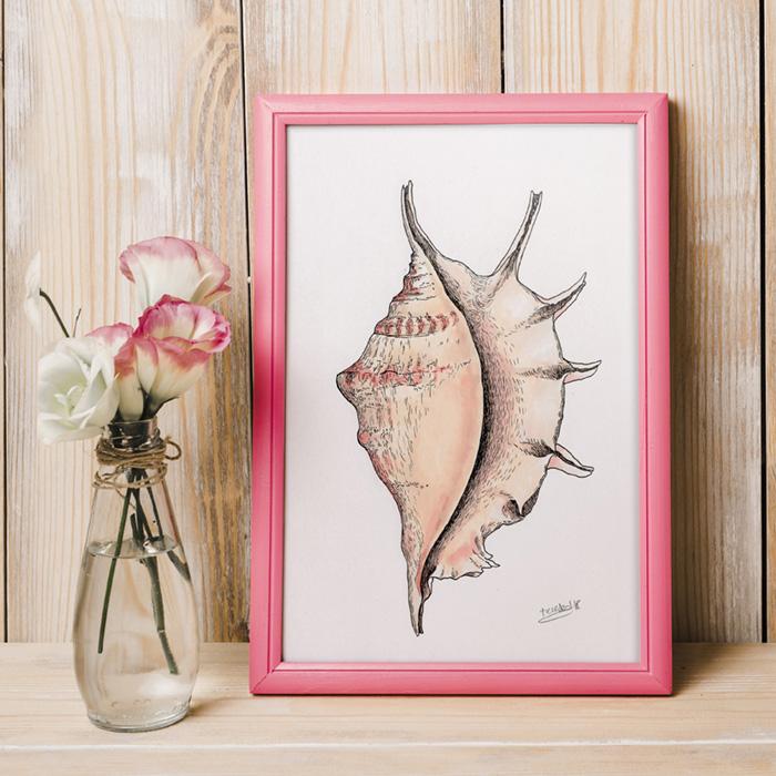 """""""Lambis lambis"""", caracola marina. Ilustración a la tinta y rotuladores."""