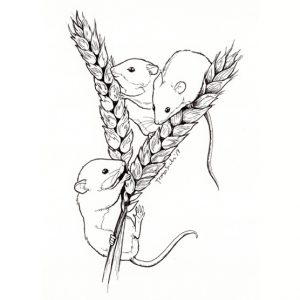 ilustración científica