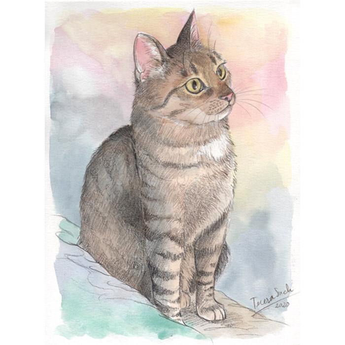 retratos personalizados de mascotas