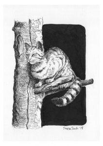 il·lustració gat
