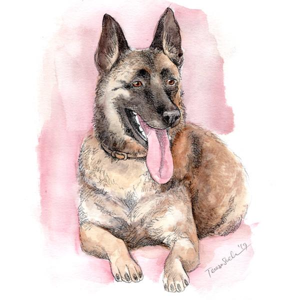 ilustración personalizada de mascotas